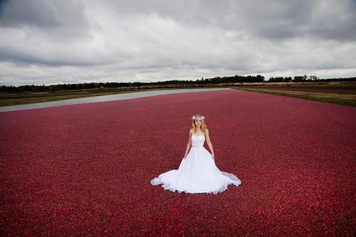 Image Result For Wedding Dress Up