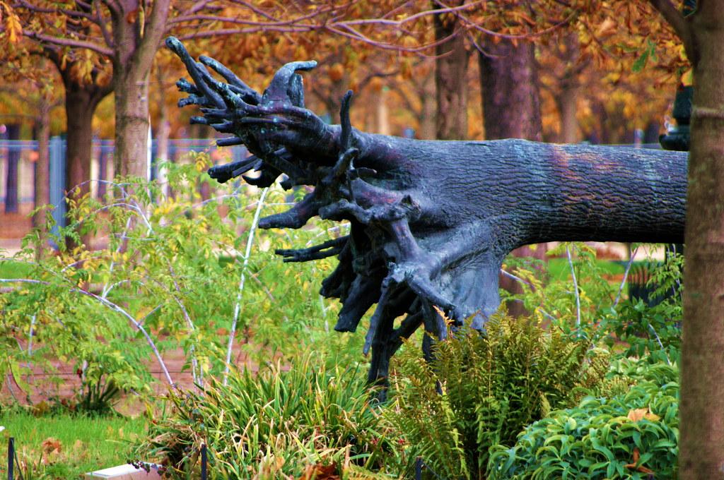 Paris sculptures dans le jardin des tuileries 5 un arbre d for Bricoler dans le jardin