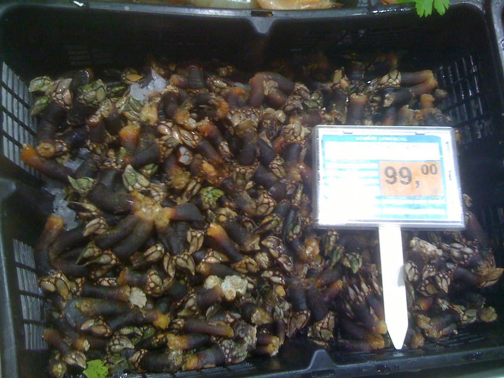 Barnacle Prices 99EUR Kg 65 Lb