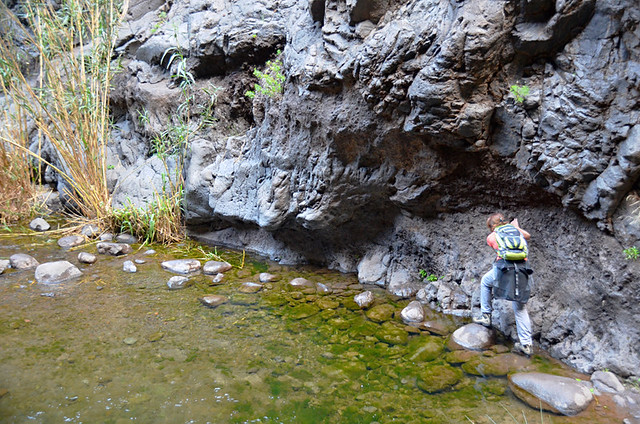 Crossing pools, Masca Barranco, Tenerife, Canary Islands