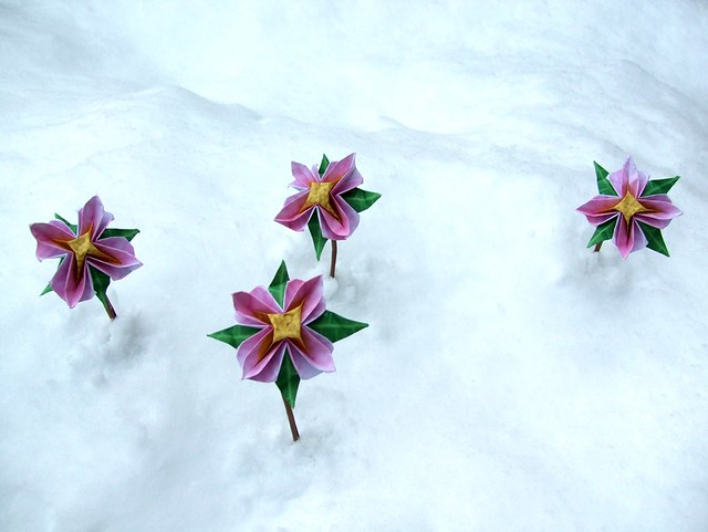 Advanced origami flowers in the snow paper origami flowers flickr advanced origami flowers in the snow by joostlangeveld mightylinksfo