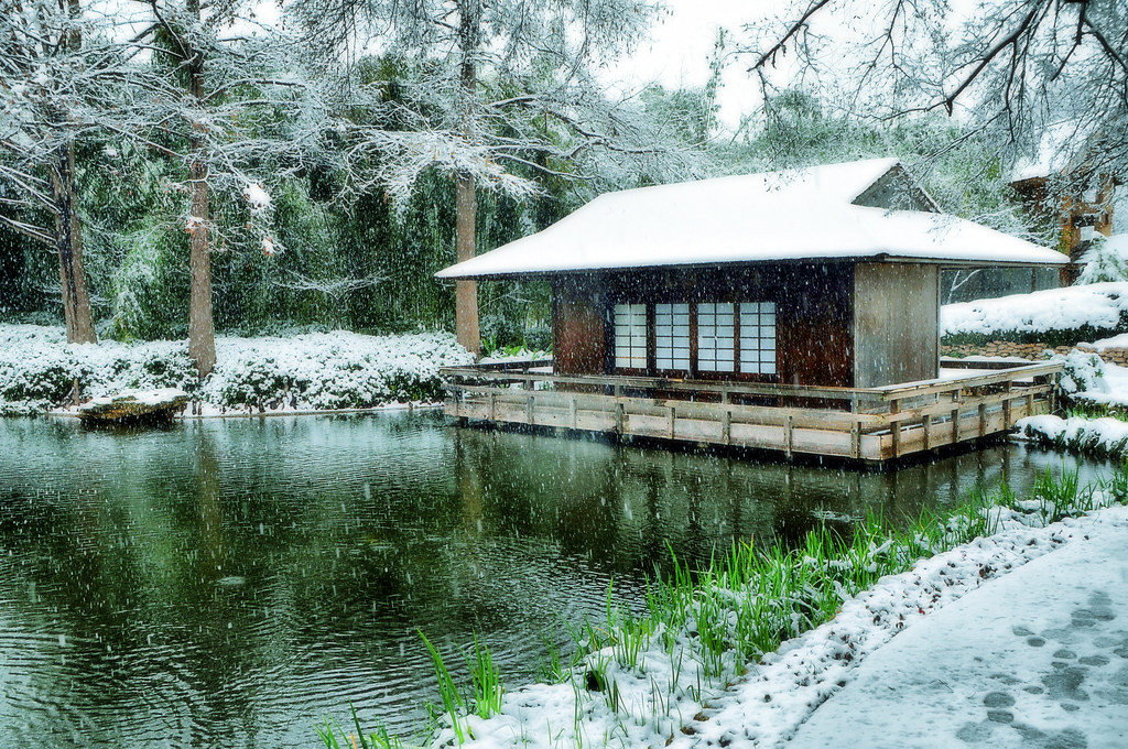 Snow japanese garden fort worth texas snowfall winter stor for Japanese garden architecture