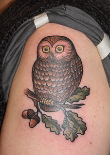 Saw-whet owl tattoo | by Kapten Hanna