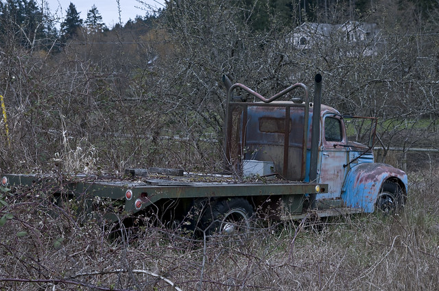 Islander Food Truck Hours