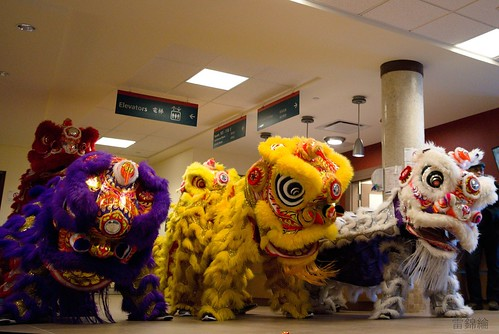 Name: jing-wo-lion-dance-009-20170211 | by goldenjadephoto