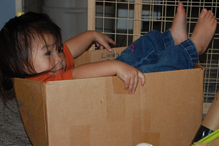 Box... almost endless fun | by cathyse97