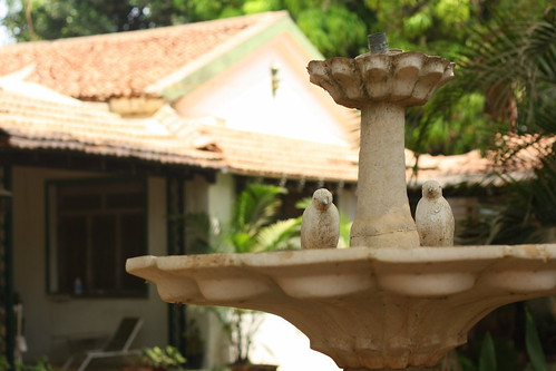 Fountain @ Perfect Peace | by Neo-grapher