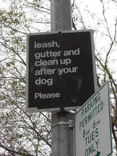 Image Result For Lease A Dog