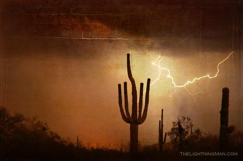 Southwest Desert Landscape | Southwest desert landscape of ...