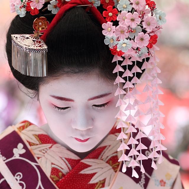 Kyoto 舞妓 梅ちほさん The Maiko Apprentice Geisha Umechiho