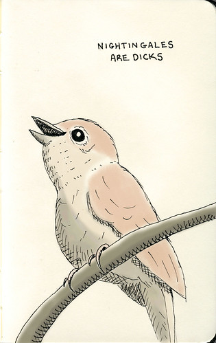 nightingales are dicks | by sween