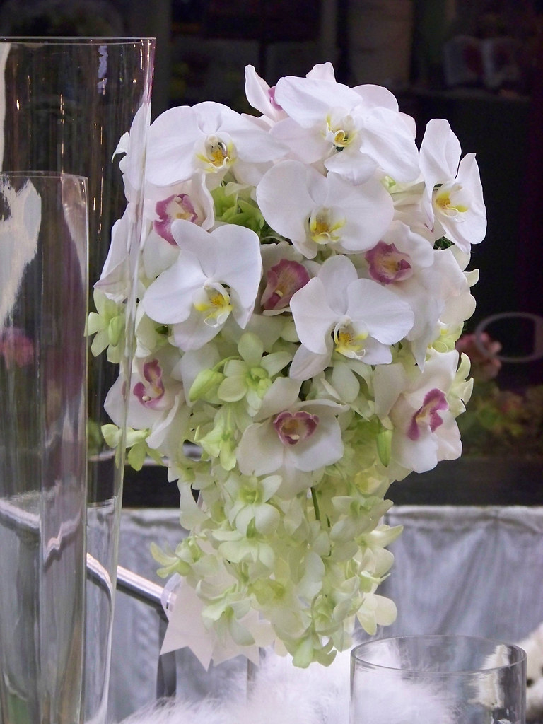 Orchid Wedding Floral Arrangements Cascading Orchids Weddi Flickr