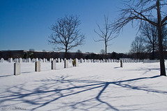 20100131C_ArlingtonCemetery13 | by Troy Thomas