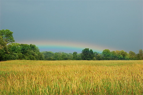low rainbow | by swaytothis (patti witten)