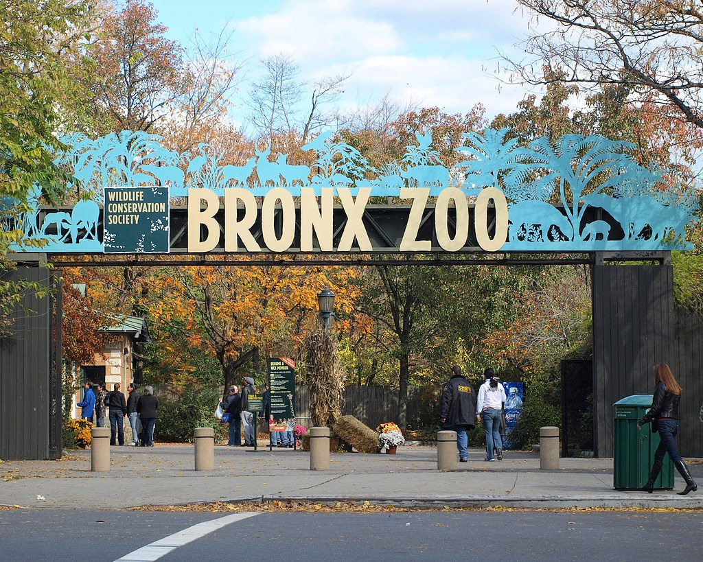 americas zoos entertainment to conservation