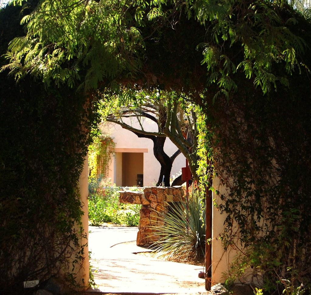 Tohono Chul Park Tucson Arizona Best Viewed Large On