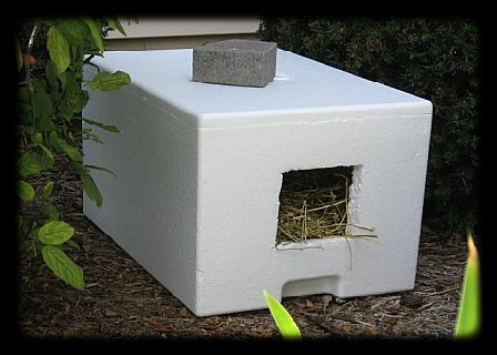 Outdoor cat shelter you can make an inexpensive outdoor for Niche exterieur pour chat pas cher