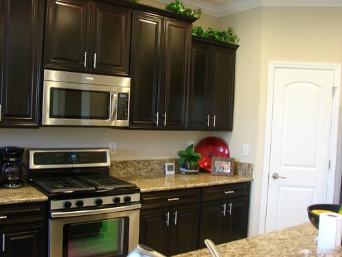 FishHawk Ranch Centex Homes New Single Family Homes Lithia