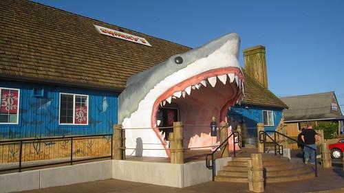 Sharky's - Ocean Shores, WA   Sharky's: Souvenir shop - Ocea ...