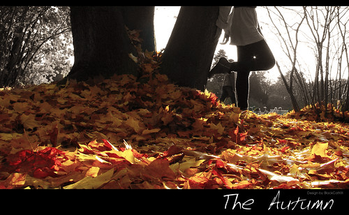 The Autumn - by L'amour de mon amour | by ʚɞ Yooki ʚɞ