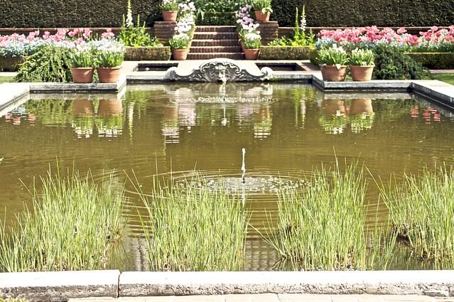 Photo for Filoli garden pool