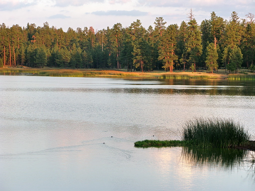 White horse lake kaibab national forest my daughter for Take me fishing lake locator