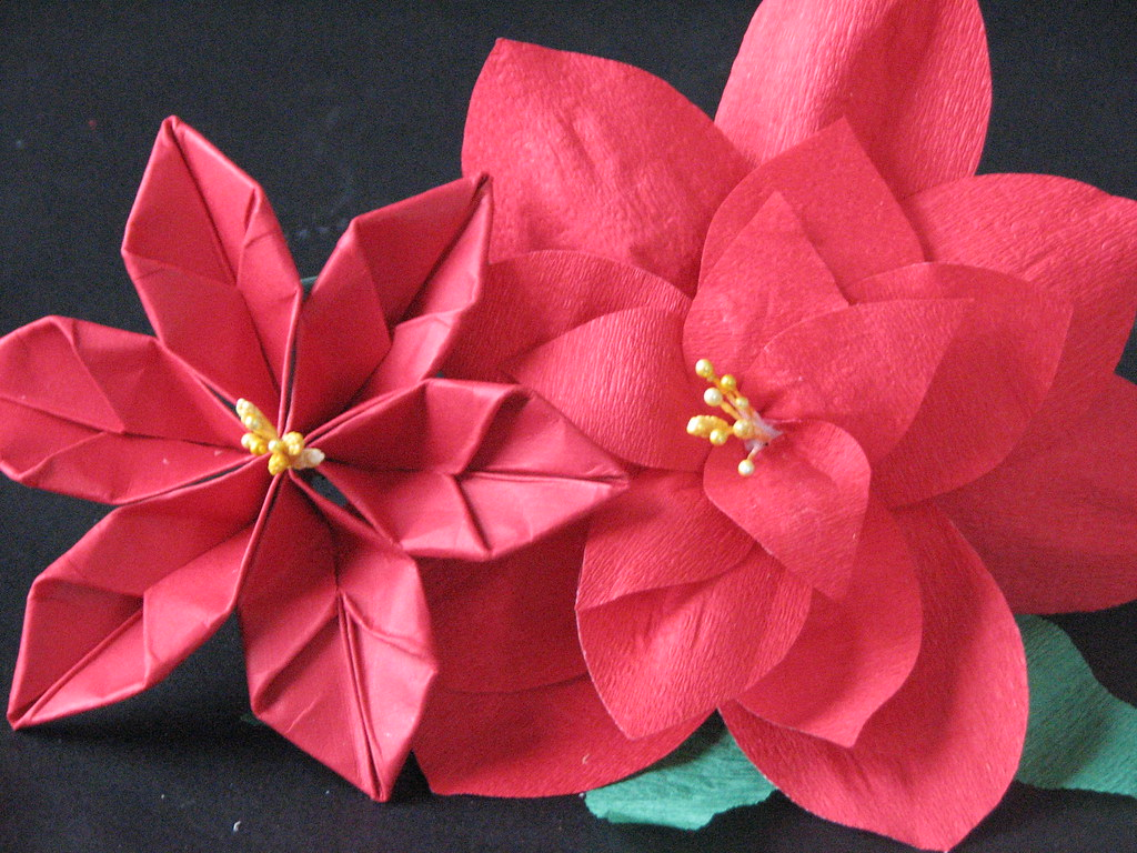 13 origami poinsettia 015 ronijj flickr origami poinsettia 015 by ronijj mightylinksfo