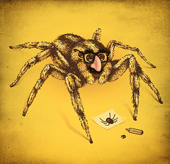 Value of the Spider | by enkel dika