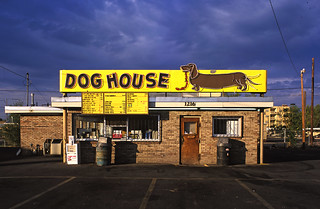 Dog house archives 2004 albuquerque new mexico for Dog house albuquerque