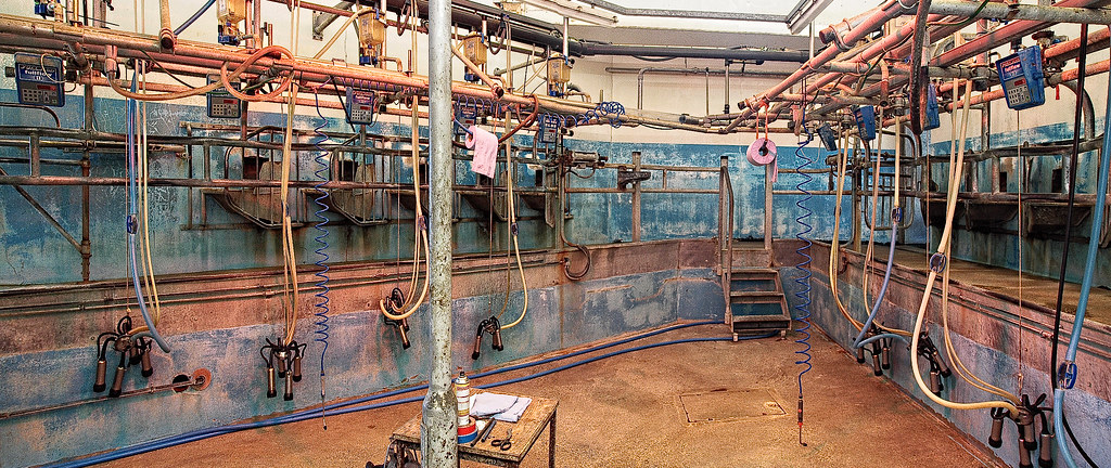 The Fullwood Tribone Milking Parlour At Sparsholt College
