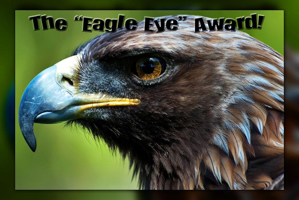 Eagle Eye Award | (view large on black) I use this award ...