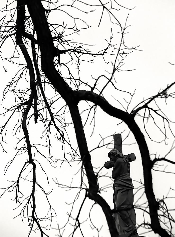 Cincinnati - Spring Grove Cemetery & Arboretum \