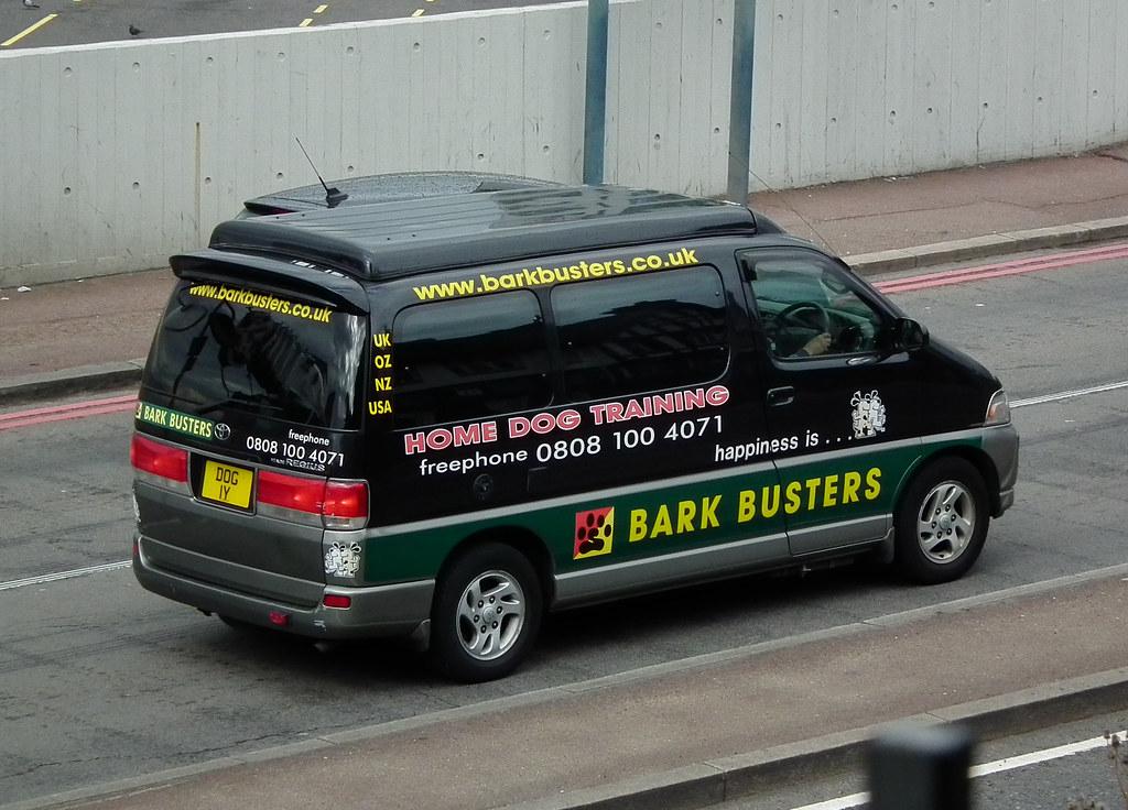 Bark Busters Dog Training Reviews