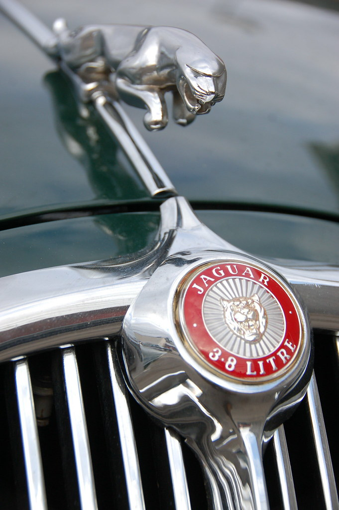 "What Is Suspension In Car >> Jaguar 3.8 S: Hood ornament & ""3.8 LITRE"" badge 