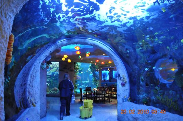 The Aquarium Restaurant | Flickr - Photo Sharing!