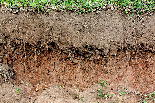 Layers of soil humas topsoil subsoil lauren scire for Soil is an example of