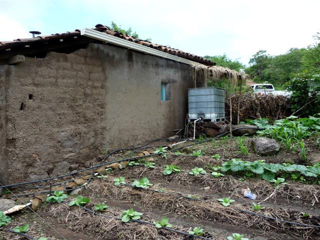 Water Tank Irrigation System : Water tank and drip irrigation system one drop flickr