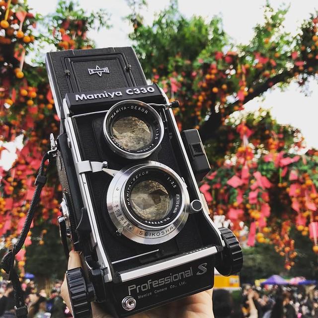 Mamiya 105mm f3.5 黑白林村許願節