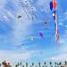 kite_festival_huntington_beach_anaheim_oc