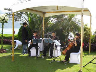 Musicians at Gordon & Mona's Wedding | by mikeleeorg