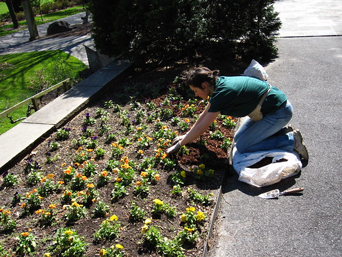 Volunteer at BBG | by Brooklyn Botanic Garden