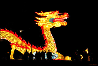 China festival of lights, dragon | by Rene Mensen