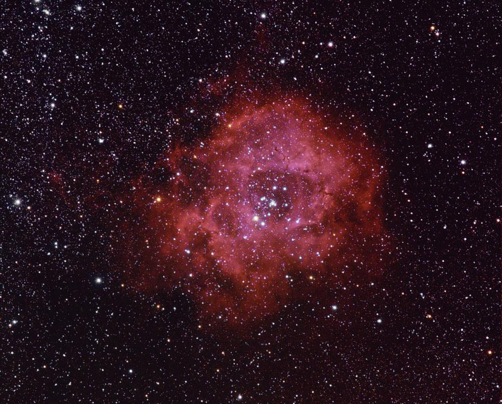 NGC2244 - Rosette Nebula in Monoceros Wide | Cencenighe ...