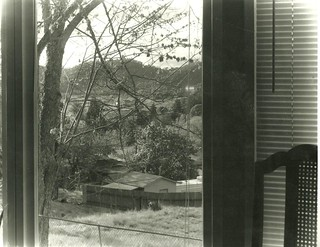 Out my living room window roseburg oregon 4x5 curtis for Living room 4x5