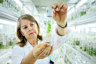 genebank4 | by CIAT International Center for Tropical Agriculture