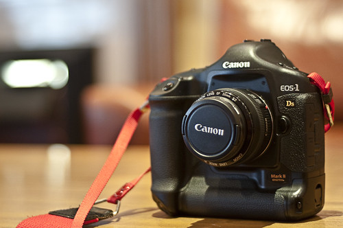 Canon EOS-1Ds MkII | by Luke Hayfield Photography