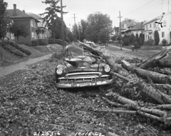 Columbus Day Storm damage, 1962 | by Seattle Municipal Archives