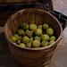 Edible Forest Gardens: black walnut