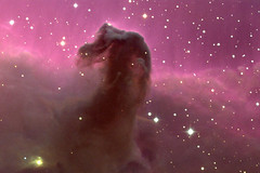 the horsehead nebula | by watcher sky