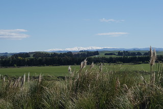 Canterbury Region and Southern Alps | by RealCamShaz